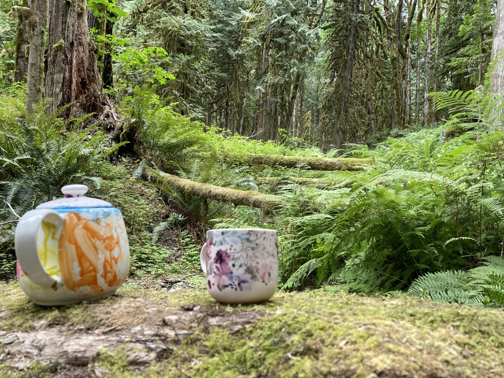A decorative teapot and teacup placed on top of a moss-covered fallen tree trunk. Several felled trees lie in the background, with dozens more still standing in the distance Part of the Teapot Hill hike in Cultus Lake.