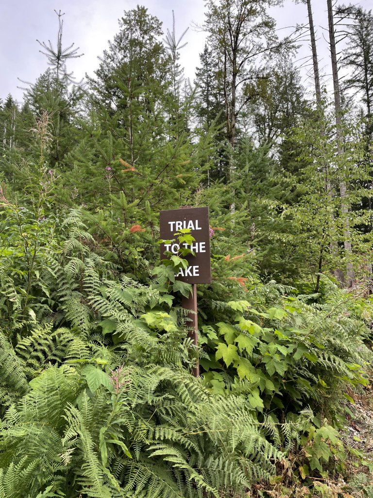 """A photo of a sign that reads """"Trial to the Lake"""". A typo, for sure, but it was a slightly tricky downhill slope to the lake, so, maybe not?"""